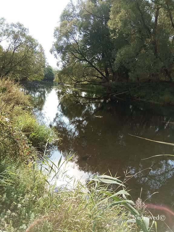 речка рядом с местом проведения геологоразведочных работ