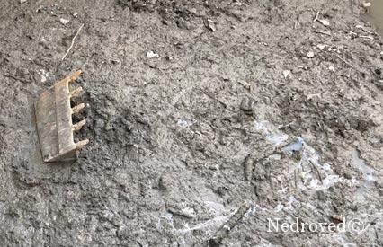 Запасы полезных ископаемых