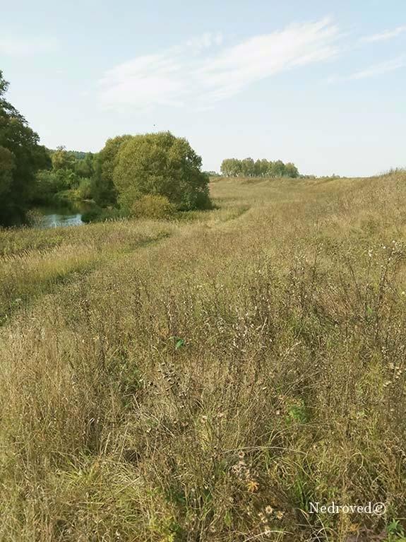 поименная терраса реки рядом с месторождением известняка